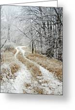Frosty Trail Greeting Card