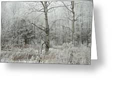 Frosty Wonderland Greeting Card