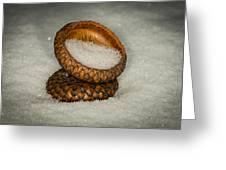 Frozen Acorn Cupule Greeting Card