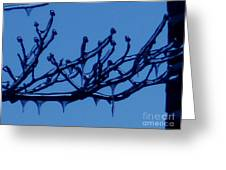 Frozen Branch Greeting Card