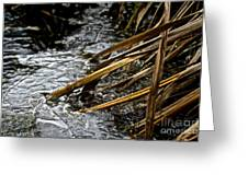 Frozen Edges And Ends Greeting Card