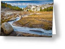 Frozen Enchantments Creek Greeting Card