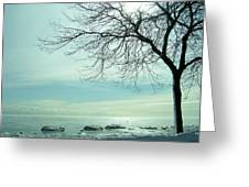 Frozen February Morning Greeting Card