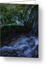 Frozen Garden Stream Greeting Card