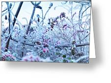 Frozen In Ice Nature Greeting Card