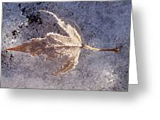 Frozen Leaf Greeting Card
