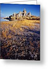 Frozen Marsh And Tufa Greeting Card