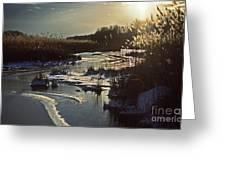 Frozen Marsh Greeting Card