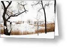Frozen Marshland IIi Greeting Card