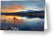 Frozen Reflections Greeting Card