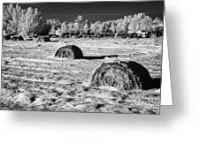 frozen snow covered hay bales in a field Forget Saskatchewan Canada Greeting Card