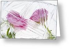 Frozen Spring Iv Greeting Card