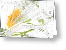Frozen Spring Vii Greeting Card