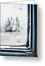 Frozen Windowpane Greeting Card