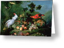 Fruit And Birds Greeting Card