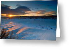 Ft Collins Snow Sparkles Greeting Card by Preston Broadfoot