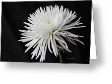 Fuji Mum Greeting Card