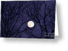 Full Moon Bare Branches Greeting Card