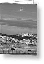 Full Moon On The Co Front Range Bw Greeting Card