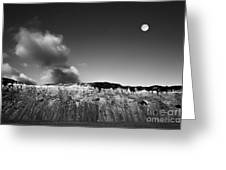 Full Moon Over Cape Cod Greeting Card by Diane Diederich