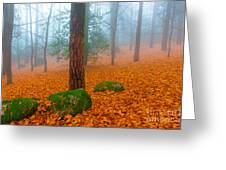 Full Of Autumn Greeting Card