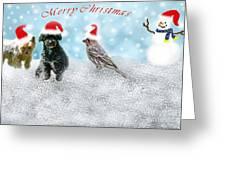 Fun Merry Christmas Card Greeting Card