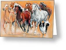 Fun With The Herd Greeting Card