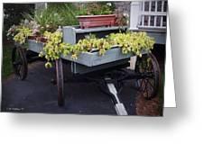 Funeral Wagon Greeting Card