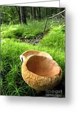 Fungi Cup Greeting Card