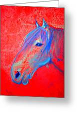 Funky Handsome Horse Blue Greeting Card