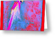 Funky Rainbow Parrot Art Prints Greeting Card