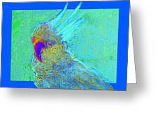 Funky Sulphur Crested Cockatoo Bird Art Prints Greeting Card