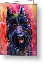 Funny Curious Scottish Terrier Dog Portrait Greeting Card by Svetlana Novikova