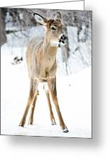 Funny Stance Greeting Card