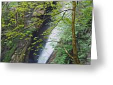 Gainfeld Waterfall In Spring Austria Greeting Card