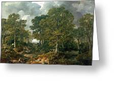 Gainsboroughs Forest Cornard Wood, C.1748 Oil On Canvas Greeting Card