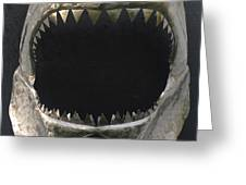 Gaint Shark Jaw Sculpture Greeting Card by Stuart Peterman
