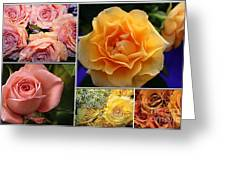 Beautiful Roses- A Collage Greeting Card