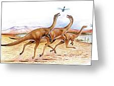 Gallimimus Dinosaurs Greeting Card