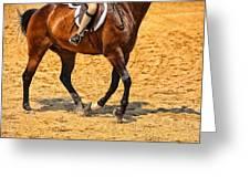 Gallop Greeting Card