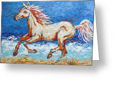Galloping Horse On Beach Greeting Card
