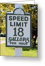 Gallops Per Hour Greeting Card