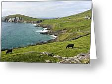 Atlantic Coast Of Ireland Greeting Card