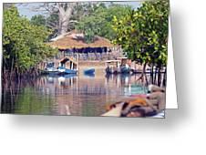 Gambian Fishing Village Greeting Card