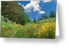 Gap Trail Greeting Card