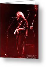 Concert  - Grateful Dead #33 Greeting Card