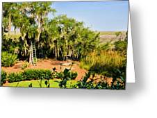 Garden And Marsh Greeting Card