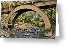 Garden Arch Greeting Card