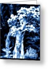 Garden Art Greeting Card by Claudette Bujold-Poirier