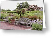 Garden Benches 6 Greeting Card